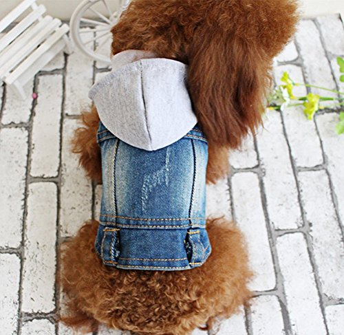 OSPet Pet Vests Dog Denim Hoodies Puppy Jacket for Small Dogs XXL (Jackets For Bulldogs compare prices)