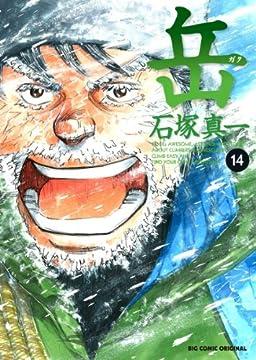 岳 みんなの山 14 (ビッグ コミックス)