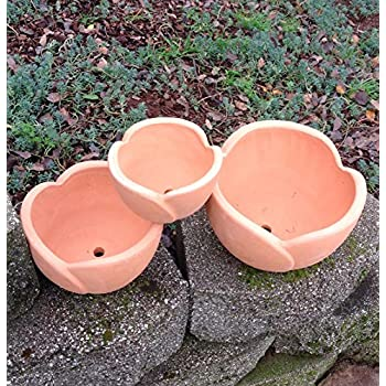 Terra Cotta Petal Shaped Flower Pot or Planter Available in Three Sizes