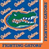 Creative Converting Florida Gators Luncheon Napkins (20 Count)