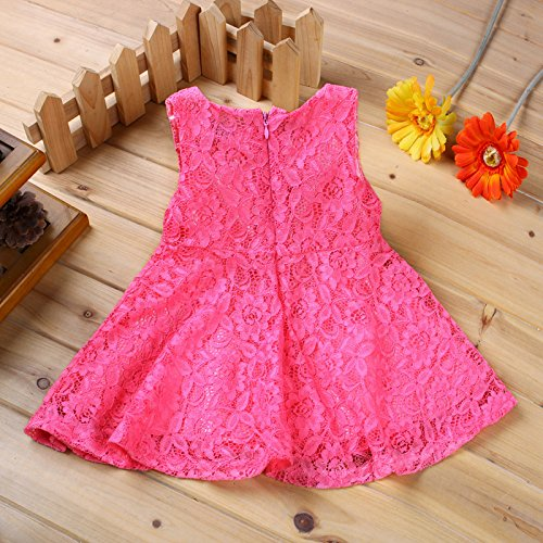 Rorychen Baby Girls' Sleeveless Lace Zipper Dress 9 Months Pink