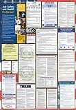 California / Federal Combination Labor Law Posters (2015)