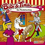 Der Pferdefasching (Bibi und Tina 41) | Ulf Tiehm