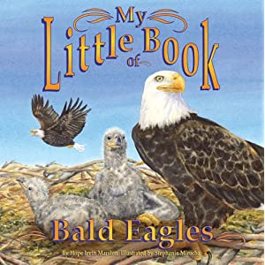 My Little Book of Bald Eagles