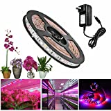 ALight House LED Plant Grow Strip Light,Full Spectrum SMD 5050 Red Blue 4:1 Rope Light with Power Adapter for Aquarium Greenhouse Hydroponic Pant (1M)