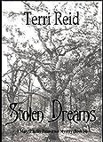 Stolen Dreams - A Mary OReilly Paranormal Mystery - Book Fourteen (Mary OReilly Paranormal Mystery Series 14)