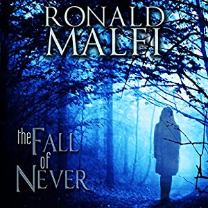The Fall of Never Audiobook