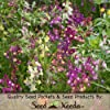 "3,000 Flower Seeds, Snapdragon ""Royal Mixture"" (Linaria maroccana) Seeds By Seed Needs"