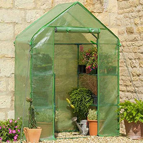 compact-walk-in-greenhouse-with-shelves-and-heavy-duty-cover