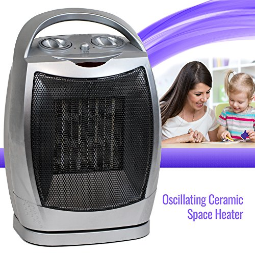 Oscillating Ceramic Space Heater Fan Home Office Portable, Adjustable Thermostat (Rotating Fan Heater compare prices)