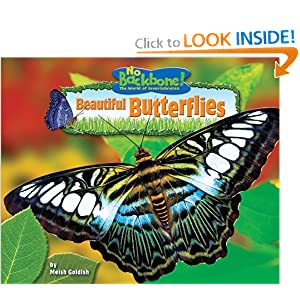 Beautiful Butterflies (No Backbone! the World of Invertebrates)