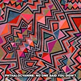 Songtexte von Phthalocyanine - No One Said You Didn't