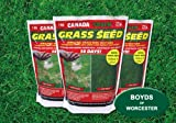 Canada Green Grass Seed: 1Kg x 3. Bulk Offer