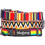"Blueberry Pet Dog Collar Rainbow Stripes Designer 3/4"" Medium Basic Polyester Nylon Dog Collar"