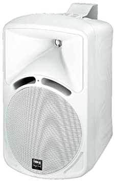 2 Way Speaker Cabinet 120W Max (PAB-88/WS)