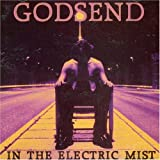 In the Electric Mist by Godsend