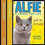 Alfie Cat in Trouble | Rachel Wells