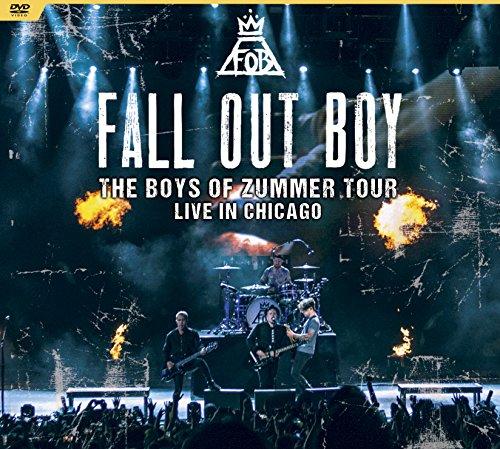 Boys of Zummer Tour: Live in Chicago [Edizione: Francia]