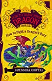 How to Train Your Dragon:  How to Fight a Dragon's Fury