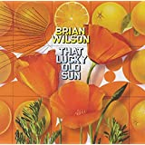 That Lucky Old Sun (CD + DVD)
