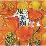 BRIAN WILSON - THAT LUCKY OLD SUN (2 CD+DVD)