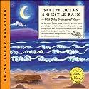 Sleepy Ocean & Gentle Rain  by Jeffrey Thompson