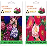 Alkarty Cineraria And Poppy Shirley Mixed Seeds Pack Of 20 (Winter)