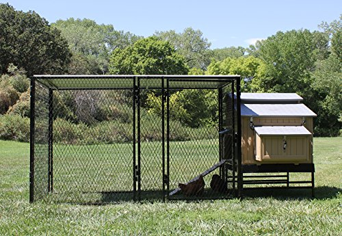 4' X 5' Large Snap N' Lock Chicken Coop & 4' X 8' Chicken Run (Snap Lock Chicken Coop compare prices)