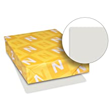 Neenah Vellum Bristol Cover Stock, 250-Sheets, Gray, 8.5 x 11-Inch (82341)