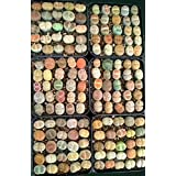 Rare Authentic Lithops Seeds with Germination Guarantee - Freshly Harvest Premium Quality – Pack of 20 Seeds – Mini Germination Kit Included