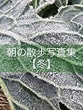 朝の散歩写真集【冬】