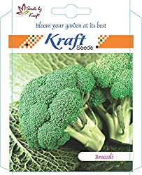 Broccoli (Pack of 2) by Kraft Seeds