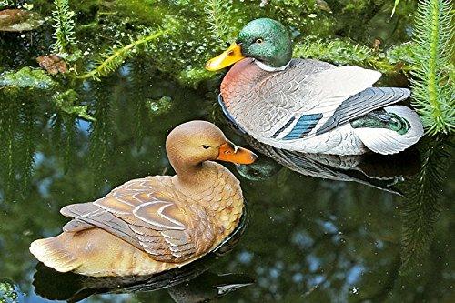 jardin-decoracion-natacion-animales-schwimmenten-juego-de-2-erpel-pato-de-plastico