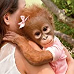 'Annabelle's Hugs' Monkey Doll by The...