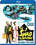 The Spirit Is Willing [Blu-ray]