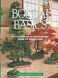 echange, troc Colin Lewis - Bonsai Basics