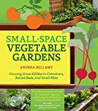 Small-Space Vegetable Gardens: Growing Great Edibles in Containers, Raised Beds, and Small Plots (English Edition)