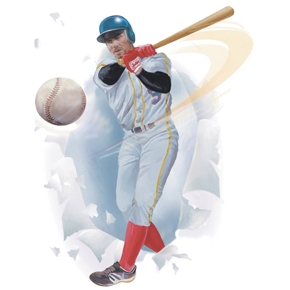 Instant Murals Baseball Wall Transfer Stickers