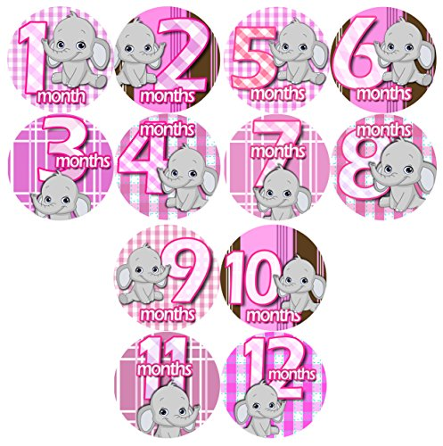 GREY BABY PINK GRAY ELEPHANTS Baby Month By Month Stickers - Baby Month Onesie Stickers Baby Shower Gift Photo Shower Stickers