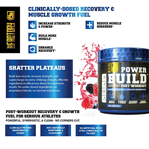 POWERBUILD Clinically-Dosed Post Workout Recovery & Muscle Building Supplement - Boost Muscle Growth, Recovery, & Strength - Creatine, Glutamine, & 5 More Powerful Ingredients - Mixed Berry Blast 17.6 oz