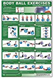 Body Ball Core Exercise Laminated Poster Chart - Total Core Workout - Personal Trainer Fitness Program for Women & Men Swiss Ball, Balance & ... Exercise Ball Improves Your Fitness - 24x36