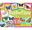 Butterfly Matching Game by eeBoo