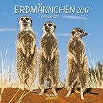 Erdm�nnchen 2017: Brosch�renkalender...