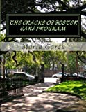 the cracks of the foster care program: why people adopt children out USA?