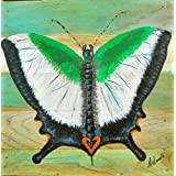 Mandi - Home Décor - Hand Painted Wall Art On Teakwood - Malabar Banded Peacock