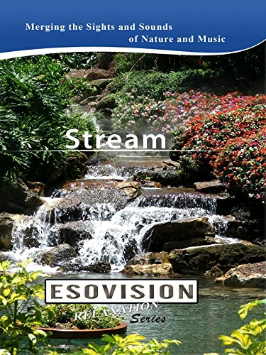 ESOVISION Relaxation STREAM