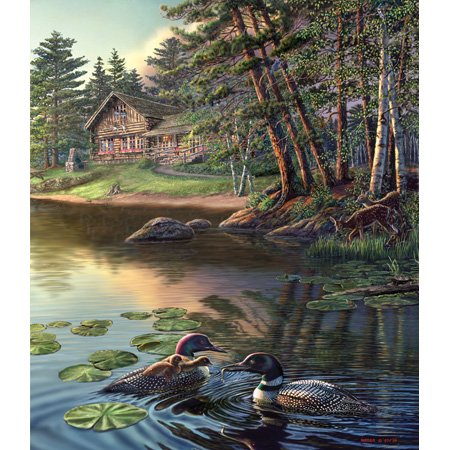 Cheap SunsOut James Meger Loons 550pc Jigsaw Puzzle (B001YJYJDU)