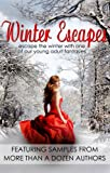 img - for Winter Escapes (Young Adult Fantasy Ebook Sampler) book / textbook / text book