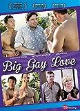 Big Gay Love [Import]
