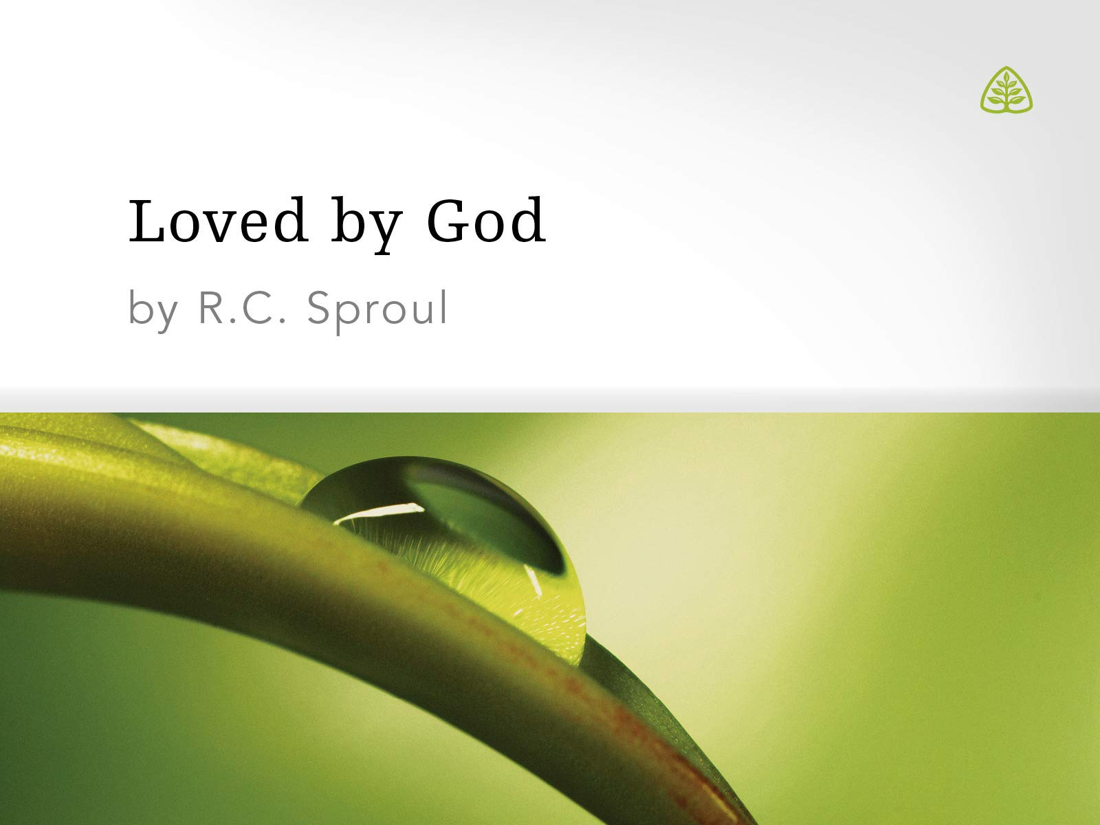 Loved by God - Season 1